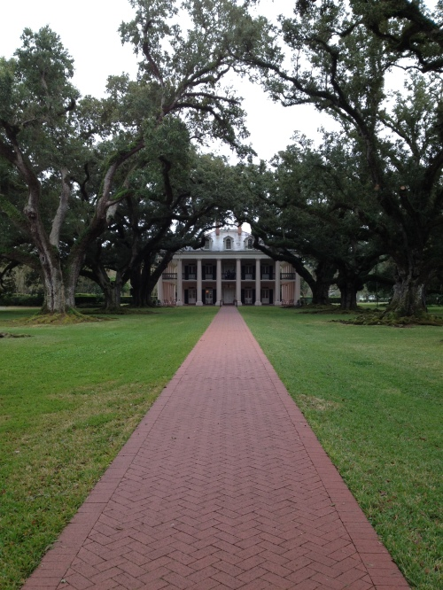 Oak Alley Plantation. My favorite part of the trip.