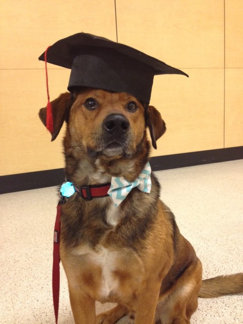 Our serious little graduate