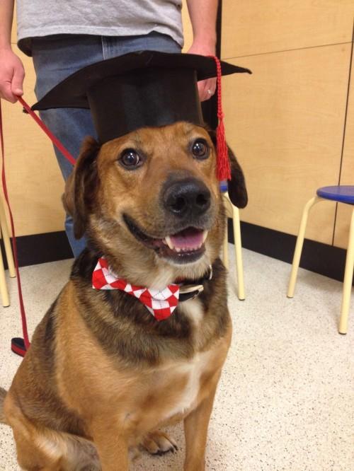 Intermediate class graduation!